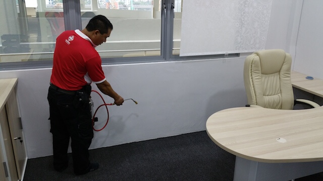 Pest Control Companies In Singapore, Singapore Bed Bug Control Services