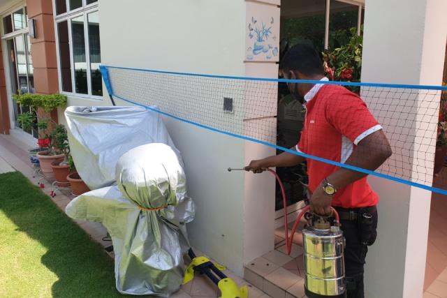Pest Control, Pest Control Singapore